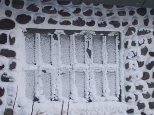 Ice Art -- only pretty on windows not sidewalks